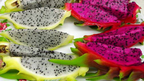 Dragon Fruit (FW)