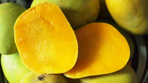Asian Mango (XAT)