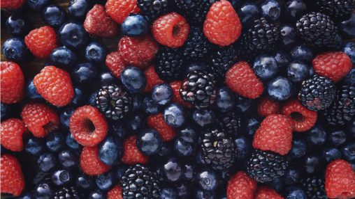 """Berry Berry Good"" (FLV)"