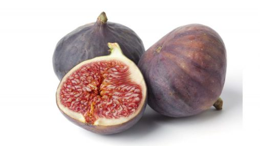 Fig Fresh (Fico) (FA)
