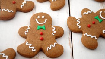Gingerbread Cookie (TPA)
